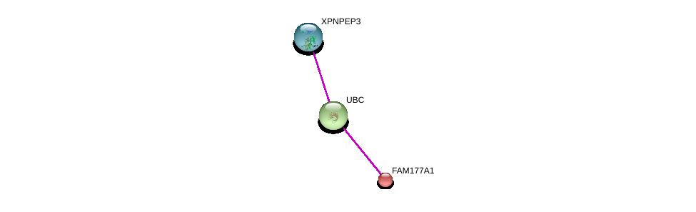http://string-db.org/version_10/api/image/networkList?limit=0&targetmode=proteins&caller_identity=gene_cards&network_flavor=evidence&identifiers=9606.ENSP00000280987%0d%0a9606.ENSP00000344818%0d%0a9606.ENSP00000349658%0d%0a