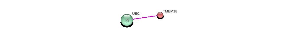 http://string-db.org/version_10/api/image/networkList?limit=0&targetmode=proteins&caller_identity=gene_cards&network_flavor=evidence&identifiers=9606.ENSP00000281017%0d%0a9606.ENSP00000344818%0d%0a