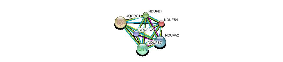 http://string-db.org/version_10/api/image/networkList?limit=0&targetmode=proteins&caller_identity=gene_cards&network_flavor=evidence&identifiers=9606.ENSP00000281031%0d%0a9606.ENSP00000252102%0d%0a9606.ENSP00000184266%0d%0a9606.ENSP00000203407%0d%0a9606.ENSP00000215565%0d%0a9606.ENSP00000233627%0d%0a