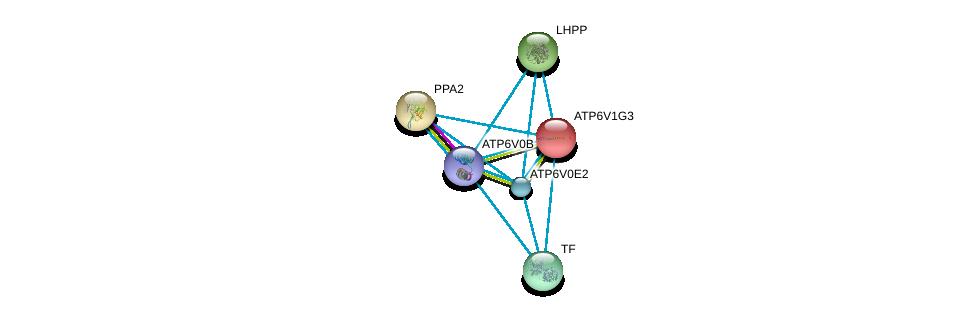 http://string-db.org/version_10/api/image/networkList?limit=0&targetmode=proteins&caller_identity=gene_cards&network_flavor=evidence&identifiers=9606.ENSP00000281087%0d%0a9606.ENSP00000357835%0d%0a9606.ENSP00000411672%0d%0a9606.ENSP00000385834%0d%0a9606.ENSP00000343885%0d%0a9606.ENSP00000431605%0d%0a