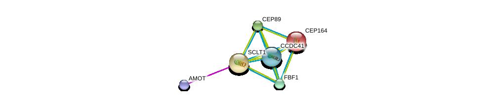http://string-db.org/version_10/api/image/networkList?limit=0&targetmode=proteins&caller_identity=gene_cards&network_flavor=evidence&identifiers=9606.ENSP00000281142%0d%0a9606.ENSP00000278935%0d%0a9606.ENSP00000306105%0d%0a9606.ENSP00000324292%0d%0a9606.ENSP00000344655%0d%0a9606.ENSP00000361027%0d%0a
