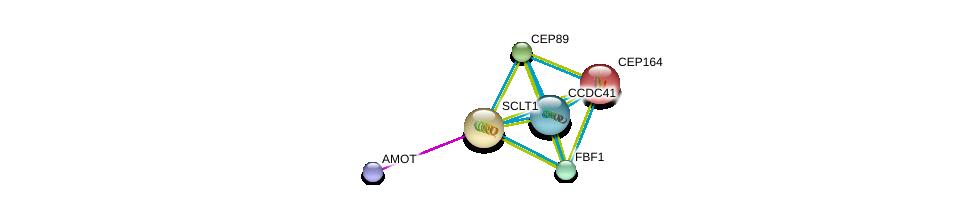 http://string-db.org/version_10/api/image/networkList?limit=0&targetmode=proteins&caller_identity=gene_cards&network_flavor=evidence&identifiers=9606.ENSP00000281142%0d%0a9606.ENSP00000344655%0d%0a9606.ENSP00000278935%0d%0a9606.ENSP00000324292%0d%0a9606.ENSP00000306105%0d%0a9606.ENSP00000361027%0d%0a