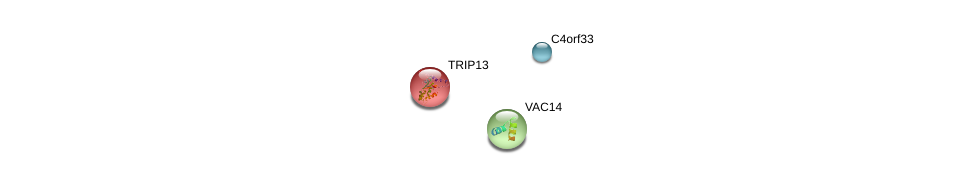 http://string-db.org/version_10/api/image/networkList?limit=0&targetmode=proteins&caller_identity=gene_cards&network_flavor=evidence&identifiers=9606.ENSP00000281146%0d%0a9606.ENSP00000166345%0d%0a9606.ENSP00000261776%0d%0a