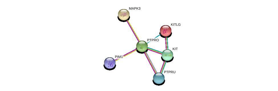 http://string-db.org/version_10/api/image/networkList?limit=0&targetmode=proteins&caller_identity=gene_cards&network_flavor=evidence&identifiers=9606.ENSP00000281171%0d%0a9606.ENSP00000228280%0d%0a9606.ENSP00000362608%0d%0a9606.ENSP00000288135%0d%0a9606.ENSP00000263025%0d%0a9606.ENSP00000334941%0d%0a