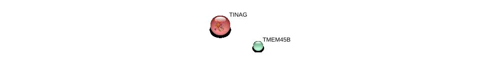http://string-db.org/version_10/api/image/networkList?limit=0&targetmode=proteins&caller_identity=gene_cards&network_flavor=evidence&identifiers=9606.ENSP00000281441%0d%0a9606.ENSP00000259782%0d%0a