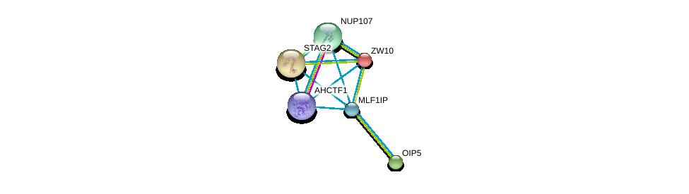 http://string-db.org/version_10/api/image/networkList?limit=0&targetmode=proteins&caller_identity=gene_cards&network_flavor=evidence&identifiers=9606.ENSP00000281453%0d%0a9606.ENSP00000355465%0d%0a9606.ENSP00000200135%0d%0a9606.ENSP00000218089%0d%0a9606.ENSP00000220514%0d%0a9606.ENSP00000229179%0d%0a