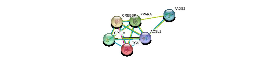http://string-db.org/version_10/api/image/networkList?limit=0&targetmode=proteins&caller_identity=gene_cards&network_flavor=evidence&identifiers=9606.ENSP00000281455%0d%0a9606.ENSP00000260129%0d%0a9606.ENSP00000262367%0d%0a9606.ENSP00000262735%0d%0a9606.ENSP00000265641%0d%0a9606.ENSP00000278840%0d%0a