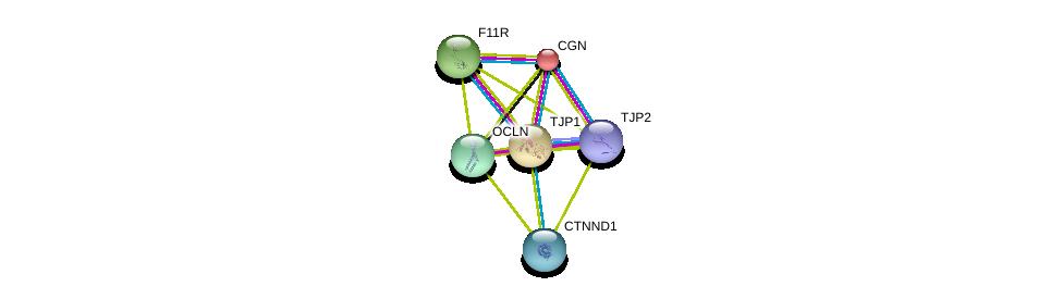 http://string-db.org/version_10/api/image/networkList?limit=0&targetmode=proteins&caller_identity=gene_cards&network_flavor=evidence&identifiers=9606.ENSP00000281537%0d%0a9606.ENSP00000438262%0d%0a9606.ENSP00000347379%0d%0a9606.ENSP00000271636%0d%0a9606.ENSP00000289779%0d%0a9606.ENSP00000382004%0d%0a
