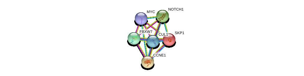 http://string-db.org/version_10/api/image/networkList?limit=0&targetmode=proteins&caller_identity=gene_cards&network_flavor=evidence&identifiers=9606.ENSP00000281708%0d%0a9606.ENSP00000326804%0d%0a9606.ENSP00000262643%0d%0a9606.ENSP00000277541%0d%0a9606.ENSP00000367207%0d%0a9606.ENSP00000231487%0d%0a