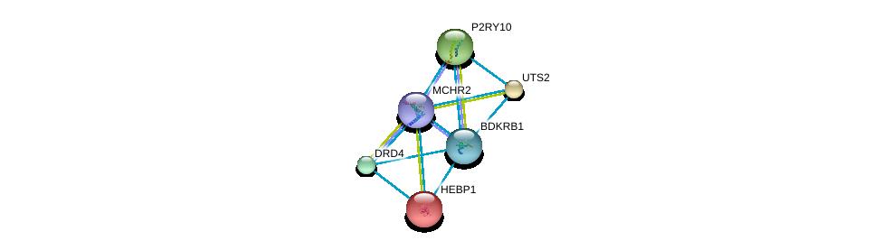 http://string-db.org/version_10/api/image/networkList?limit=0&targetmode=proteins&caller_identity=gene_cards&network_flavor=evidence&identifiers=9606.ENSP00000281806%0d%0a9606.ENSP00000014930%0d%0a9606.ENSP00000054668%0d%0a9606.ENSP00000171757%0d%0a9606.ENSP00000176183%0d%0a9606.ENSP00000216629%0d%0a