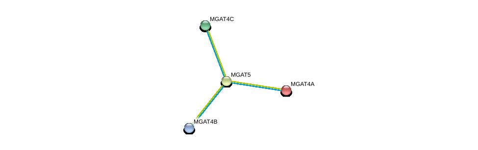 http://string-db.org/version_10/api/image/networkList?limit=0&targetmode=proteins&caller_identity=gene_cards&network_flavor=evidence&identifiers=9606.ENSP00000281923%0d%0a9606.ENSP00000264968%0d%0a9606.ENSP00000331664%0d%0a9606.ENSP00000338487%0d%0a