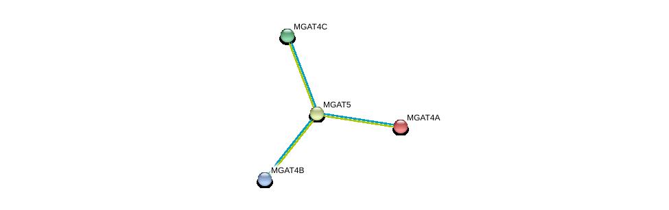 http://string-db.org/version_10/api/image/networkList?limit=0&targetmode=proteins&caller_identity=gene_cards&network_flavor=evidence&identifiers=9606.ENSP00000281923%0d%0a9606.ENSP00000338487%0d%0a9606.ENSP00000331664%0d%0a9606.ENSP00000264968%0d%0a