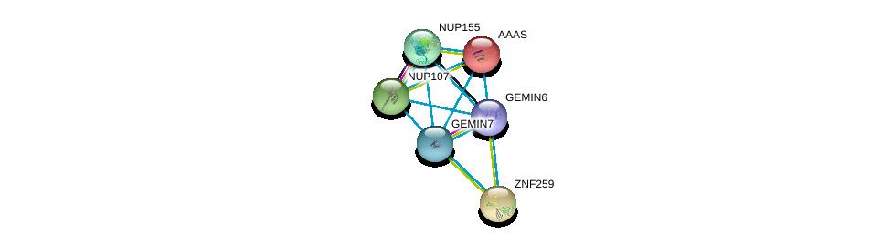 http://string-db.org/version_10/api/image/networkList?limit=0&targetmode=proteins&caller_identity=gene_cards&network_flavor=evidence&identifiers=9606.ENSP00000281950%0d%0a9606.ENSP00000270257%0d%0a9606.ENSP00000209873%0d%0a9606.ENSP00000227322%0d%0a9606.ENSP00000229179%0d%0a9606.ENSP00000231498%0d%0a