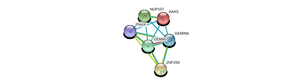 http://string-db.org/version_10/api/image/networkList?limit=0&targetmode=proteins&caller_identity=gene_cards&network_flavor=evidence&identifiers=9606.ENSP00000281950%0d%0a9606.ENSP00000270257%0d%0a9606.ENSP00000297540%0d%0a9606.ENSP00000209873%0d%0a9606.ENSP00000227322%0d%0a9606.ENSP00000229179%0d%0a