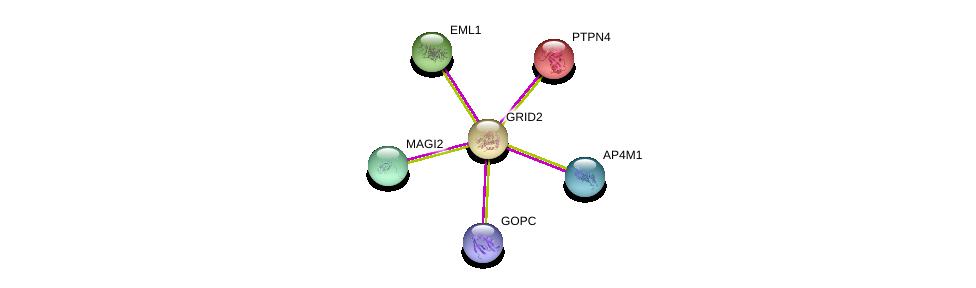 http://string-db.org/version_10/api/image/networkList?limit=0&targetmode=proteins&caller_identity=gene_cards&network_flavor=evidence&identifiers=9606.ENSP00000282020%0d%0a9606.ENSP00000263708%0d%0a9606.ENSP00000334314%0d%0a9606.ENSP00000346151%0d%0a9606.ENSP00000352603%0d%0a9606.ENSP00000357484%0d%0a