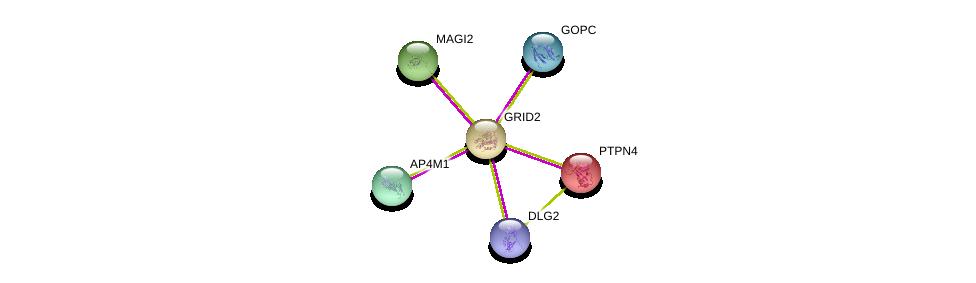 http://string-db.org/version_10/api/image/networkList?limit=0&targetmode=proteins&caller_identity=gene_cards&network_flavor=evidence&identifiers=9606.ENSP00000282020%0d%0a9606.ENSP00000263708%0d%0a9606.ENSP00000346151%0d%0a9606.ENSP00000352603%0d%0a9606.ENSP00000357484%0d%0a9606.ENSP00000365272%0d%0a