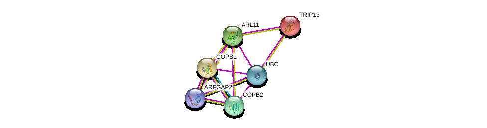 http://string-db.org/version_10/api/image/networkList?limit=0&targetmode=proteins&caller_identity=gene_cards&network_flavor=evidence&identifiers=9606.ENSP00000282026%0d%0a9606.ENSP00000344818%0d%0a9606.ENSP00000166345%0d%0a9606.ENSP00000329419%0d%0a9606.ENSP00000249923%0d%0a9606.ENSP00000434442%0d%0a