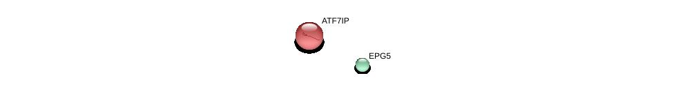 http://string-db.org/version_10/api/image/networkList?limit=0&targetmode=proteins&caller_identity=gene_cards&network_flavor=evidence&identifiers=9606.ENSP00000282041%0d%0a9606.ENSP00000261168%0d%0a