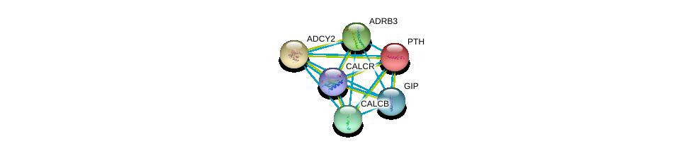 http://string-db.org/version_10/api/image/networkList?limit=0&targetmode=proteins&caller_identity=gene_cards&network_flavor=evidence&identifiers=9606.ENSP00000282091%0d%0a9606.ENSP00000342952%0d%0a9606.ENSP00000343782%0d%0a9606.ENSP00000346017%0d%0a9606.ENSP00000350005%0d%0a9606.ENSP00000352561%0d%0a