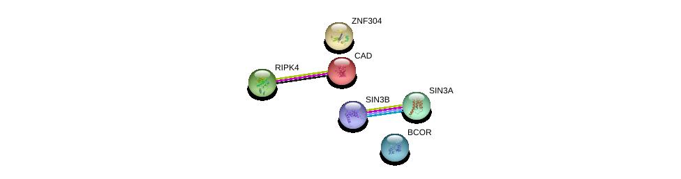 http://string-db.org/version_10/api/image/networkList?limit=0&targetmode=proteins&caller_identity=gene_cards&network_flavor=evidence&identifiers=9606.ENSP00000282286%0d%0a9606.ENSP00000353622%0d%0a9606.ENSP00000369131%0d%0a9606.ENSP00000367705%0d%0a9606.ENSP00000264705%0d%0a9606.ENSP00000332454%0d%0a