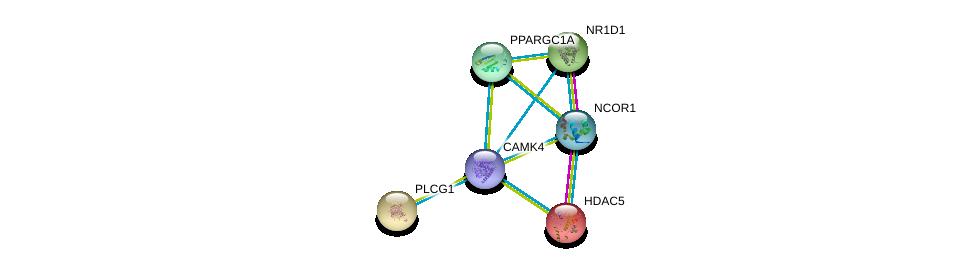 http://string-db.org/version_10/api/image/networkList?limit=0&targetmode=proteins&caller_identity=gene_cards&network_flavor=evidence&identifiers=9606.ENSP00000282356%0d%0a9606.ENSP00000244007%0d%0a9606.ENSP00000246672%0d%0a9606.ENSP00000264867%0d%0a9606.ENSP00000225983%0d%0a9606.ENSP00000268712%0d%0a