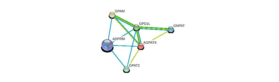 http://string-db.org/version_10/api/image/networkList?limit=0&targetmode=proteins&caller_identity=gene_cards&network_flavor=evidence&identifiers=9606.ENSP00000282541%0d%0a9606.ENSP00000369099%0d%0a9606.ENSP00000264409%0d%0a9606.ENSP00000265276%0d%0a9606.ENSP00000352547%0d%0a9606.ENSP00000355607%0d%0a