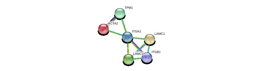 http://string-db.org/version_10/api/image/networkList?limit=0&targetmode=proteins&caller_identity=gene_cards&network_flavor=evidence&identifiers=9606.ENSP00000282588%0d%0a9606.ENSP00000303351%0d%0a9606.ENSP00000224784%0d%0a9606.ENSP00000258341%0d%0a9606.ENSP00000264144%0d%0a9606.ENSP00000267996%0d%0a