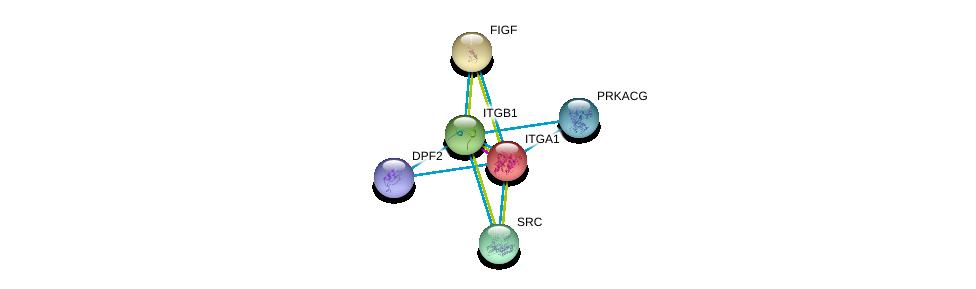 http://string-db.org/version_10/api/image/networkList?limit=0&targetmode=proteins&caller_identity=gene_cards&network_flavor=evidence&identifiers=9606.ENSP00000282588%0d%0a9606.ENSP00000303351%0d%0a9606.ENSP00000366488%0d%0a9606.ENSP00000350941%0d%0a9606.ENSP00000436901%0d%0a9606.ENSP00000297904%0d%0a