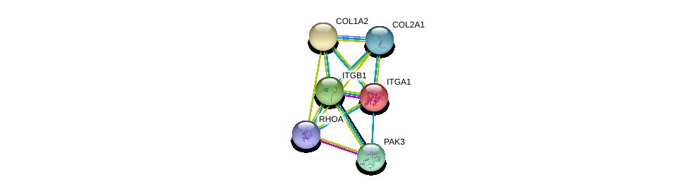 http://string-db.org/version_10/api/image/networkList?limit=0&targetmode=proteins&caller_identity=gene_cards&network_flavor=evidence&identifiers=9606.ENSP00000282588%0d%0a9606.ENSP00000303351%0d%0a9606.ENSP00000369889%0d%0a9606.ENSP00000297268%0d%0a9606.ENSP00000400175%0d%0a9606.ENSP00000353864%0d%0a