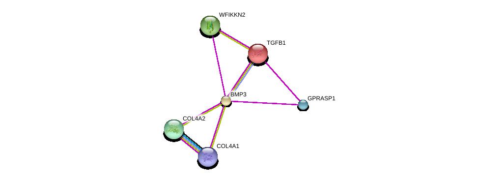 http://string-db.org/version_10/api/image/networkList?limit=0&targetmode=proteins&caller_identity=gene_cards&network_flavor=evidence&identifiers=9606.ENSP00000282701%0d%0a9606.ENSP00000353654%0d%0a9606.ENSP00000364979%0d%0a9606.ENSP00000221930%0d%0a9606.ENSP00000311184%0d%0a9606.ENSP00000355146%0d%0a