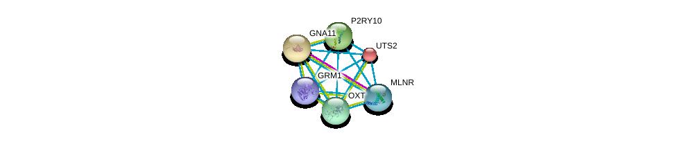 http://string-db.org/version_10/api/image/networkList?limit=0&targetmode=proteins&caller_identity=gene_cards&network_flavor=evidence&identifiers=9606.ENSP00000282753%0d%0a9606.ENSP00000054668%0d%0a9606.ENSP00000078429%0d%0a9606.ENSP00000171757%0d%0a9606.ENSP00000217386%0d%0a9606.ENSP00000218721%0d%0a