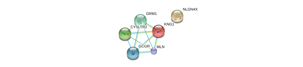 http://string-db.org/version_10/api/image/networkList?limit=0&targetmode=proteins&caller_identity=gene_cards&network_flavor=evidence&identifiers=9606.ENSP00000282753%0d%0a9606.ENSP00000275857%0d%0a9606.ENSP00000282018%0d%0a9606.ENSP00000388825%0d%0a9606.ENSP00000265023%0d%0a9606.ENSP00000383558%0d%0a