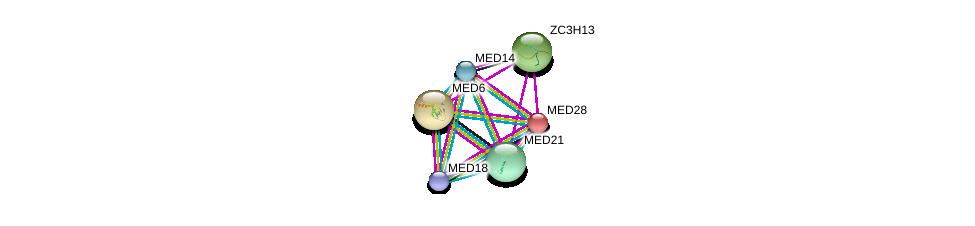 http://string-db.org/version_10/api/image/networkList?limit=0&targetmode=proteins&caller_identity=gene_cards&network_flavor=evidence&identifiers=9606.ENSP00000282892%0d%0a9606.ENSP00000282007%0d%0a9606.ENSP00000237380%0d%0a9606.ENSP00000323720%0d%0a9606.ENSP00000362948%0d%0a9606.ENSP00000256379%0d%0a
