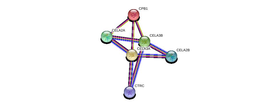 http://string-db.org/version_10/api/image/networkList?limit=0&targetmode=proteins&caller_identity=gene_cards&network_flavor=evidence&identifiers=9606.ENSP00000282957%0d%0a9606.ENSP00000352639%0d%0a9606.ENSP00000365116%0d%0a9606.ENSP00000290122%0d%0a9606.ENSP00000338369%0d%0a9606.ENSP00000365075%0d%0a
