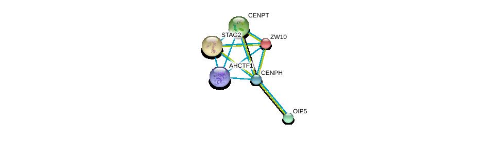 http://string-db.org/version_10/api/image/networkList?limit=0&targetmode=proteins&caller_identity=gene_cards&network_flavor=evidence&identifiers=9606.ENSP00000283006%0d%0a9606.ENSP00000355465%0d%0a9606.ENSP00000200135%0d%0a9606.ENSP00000218089%0d%0a9606.ENSP00000219172%0d%0a9606.ENSP00000220514%0d%0a