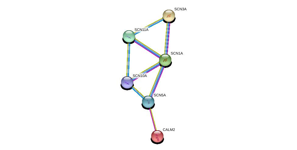 http://string-db.org/version_10/api/image/networkList?limit=0&targetmode=proteins&caller_identity=gene_cards&network_flavor=evidence&identifiers=9606.ENSP00000283254%0d%0a9606.ENSP00000272298%0d%0a9606.ENSP00000328968%0d%0a9606.ENSP00000307599%0d%0a9606.ENSP00000390600%0d%0a9606.ENSP00000303540%0d%0a