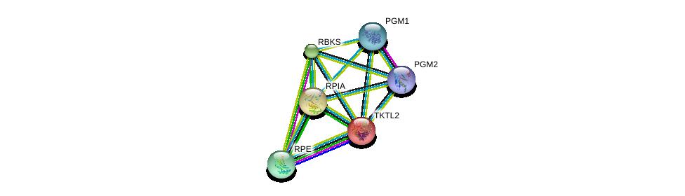 http://string-db.org/version_10/api/image/networkList?limit=0&targetmode=proteins&caller_identity=gene_cards&network_flavor=evidence&identifiers=9606.ENSP00000283646%0d%0a9606.ENSP00000306817%0d%0a9606.ENSP00000280605%0d%0a9606.ENSP00000352401%0d%0a9606.ENSP00000360124%0d%0a9606.ENSP00000371393%0d%0a