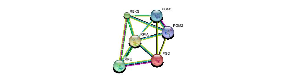 http://string-db.org/version_10/api/image/networkList?limit=0&targetmode=proteins&caller_identity=gene_cards&network_flavor=evidence&identifiers=9606.ENSP00000283646%0d%0a9606.ENSP00000352401%0d%0a9606.ENSP00000270776%0d%0a9606.ENSP00000360124%0d%0a9606.ENSP00000306817%0d%0a9606.ENSP00000371393%0d%0a
