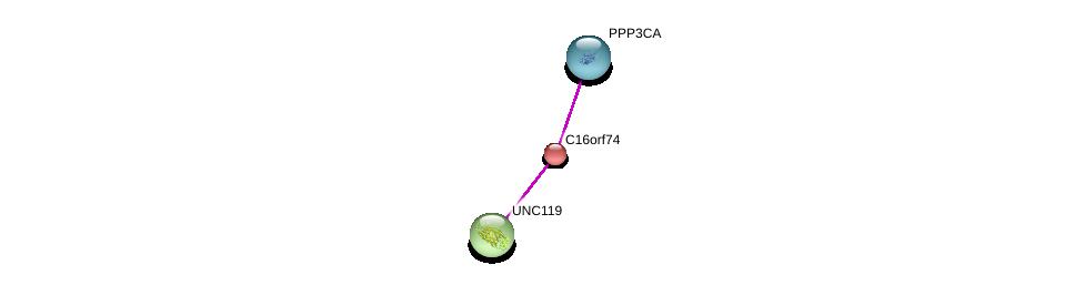 http://string-db.org/version_10/api/image/networkList?limit=0&targetmode=proteins&caller_identity=gene_cards&network_flavor=evidence&identifiers=9606.ENSP00000284245%0d%0a9606.ENSP00000378323%0d%0a9606.ENSP00000337040%0d%0a