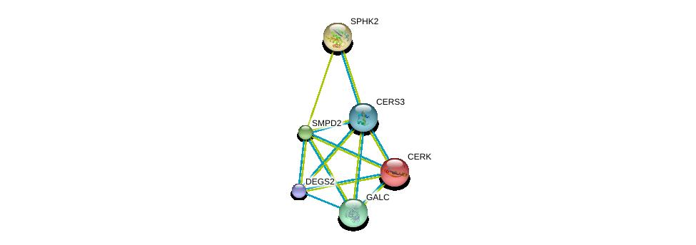 http://string-db.org/version_10/api/image/networkList?limit=0&targetmode=proteins&caller_identity=gene_cards&network_flavor=evidence&identifiers=9606.ENSP00000284382%0d%0a9606.ENSP00000216264%0d%0a9606.ENSP00000245222%0d%0a9606.ENSP00000258052%0d%0a9606.ENSP00000261304%0d%0a9606.ENSP00000307126%0d%0a
