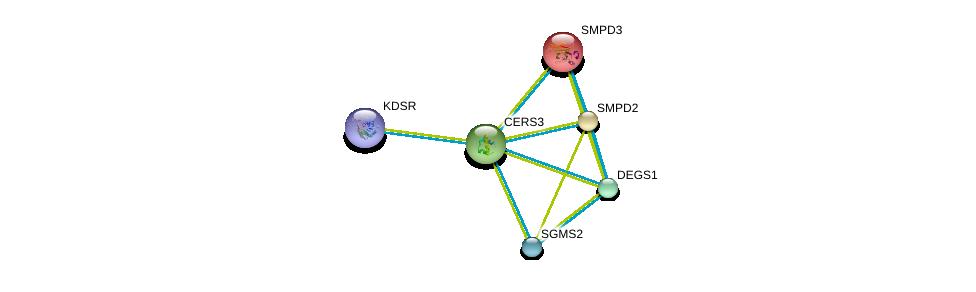 http://string-db.org/version_10/api/image/networkList?limit=0&targetmode=proteins&caller_identity=gene_cards&network_flavor=evidence&identifiers=9606.ENSP00000284382%0d%0a9606.ENSP00000316476%0d%0a9606.ENSP00000385083%0d%0a9606.ENSP00000351981%0d%0a9606.ENSP00000219334%0d%0a9606.ENSP00000258052%0d%0a