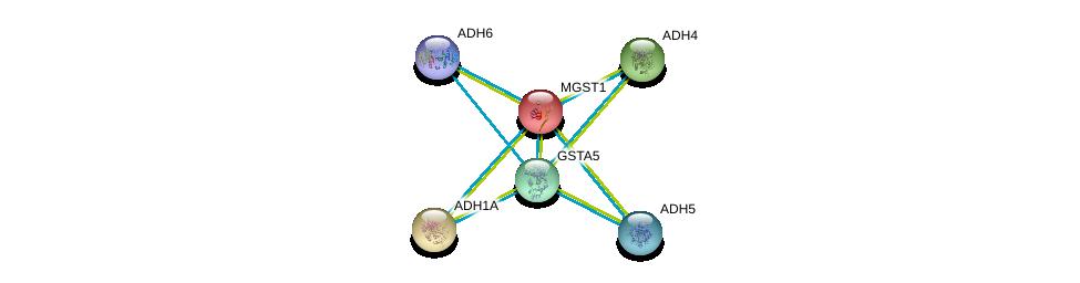 http://string-db.org/version_10/api/image/networkList?limit=0&targetmode=proteins&caller_identity=gene_cards&network_flavor=evidence&identifiers=9606.ENSP00000284562%0d%0a9606.ENSP00000209668%0d%0a9606.ENSP00000265512%0d%0a9606.ENSP00000296412%0d%0a9606.ENSP00000378359%0d%0a9606.ENSP00000010404%0d%0a