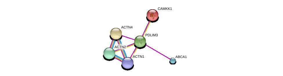 http://string-db.org/version_10/api/image/networkList?limit=0&targetmode=proteins&caller_identity=gene_cards&network_flavor=evidence&identifiers=9606.ENSP00000284770%0d%0a9606.ENSP00000377941%0d%0a9606.ENSP00000252699%0d%0a9606.ENSP00000158166%0d%0a9606.ENSP00000363868%0d%0a9606.ENSP00000355537%0d%0a