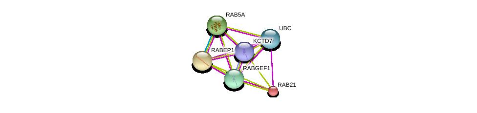 http://string-db.org/version_10/api/image/networkList?limit=0&targetmode=proteins&caller_identity=gene_cards&network_flavor=evidence&identifiers=9606.ENSP00000284957%0d%0a9606.ENSP00000344818%0d%0a9606.ENSP00000262477%0d%0a9606.ENSP00000273047%0d%0a9606.ENSP00000261263%0d%0a9606.ENSP00000398177%0d%0a