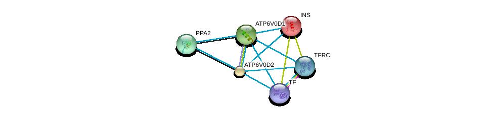 http://string-db.org/version_10/api/image/networkList?limit=0&targetmode=proteins&caller_identity=gene_cards&network_flavor=evidence&identifiers=9606.ENSP00000285393%0d%0a9606.ENSP00000343885%0d%0a9606.ENSP00000250971%0d%0a9606.ENSP00000353224%0d%0a9606.ENSP00000290949%0d%0a9606.ENSP00000385834%0d%0a