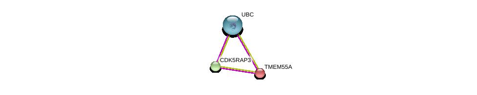 http://string-db.org/version_10/api/image/networkList?limit=0&targetmode=proteins&caller_identity=gene_cards&network_flavor=evidence&identifiers=9606.ENSP00000285419%0d%0a9606.ENSP00000344818%0d%0a9606.ENSP00000344683%0d%0a