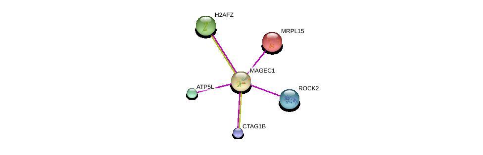 http://string-db.org/version_10/api/image/networkList?limit=0&targetmode=proteins&caller_identity=gene_cards&network_flavor=evidence&identifiers=9606.ENSP00000285879%0d%0a9606.ENSP00000332602%0d%0a9606.ENSP00000260102%0d%0a9606.ENSP00000296417%0d%0a9606.ENSP00000300688%0d%0a9606.ENSP00000317985%0d%0a