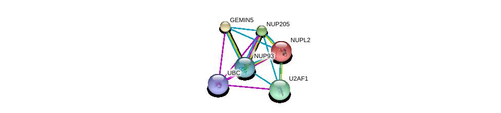 http://string-db.org/version_10/api/image/networkList?limit=0&targetmode=proteins&caller_identity=gene_cards&network_flavor=evidence&identifiers=9606.ENSP00000285968%0d%0a9606.ENSP00000344818%0d%0a9606.ENSP00000310668%0d%0a9606.ENSP00000285873%0d%0a9606.ENSP00000291552%0d%0a9606.ENSP00000258742%0d%0a