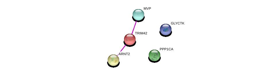 http://string-db.org/version_10/api/image/networkList?limit=0&targetmode=proteins&caller_identity=gene_cards&network_flavor=evidence&identifiers=9606.ENSP00000286349%0d%0a9606.ENSP00000307479%0d%0a9606.ENSP00000307479%0d%0a9606.ENSP00000349977%0d%0a9606.ENSP00000326031%0d%0a9606.ENSP00000389175%0d%0a
