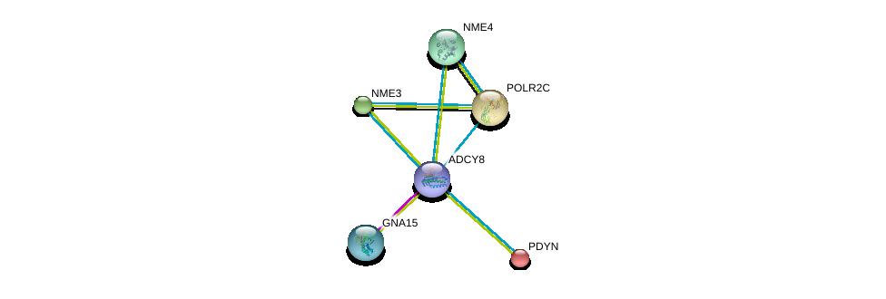 http://string-db.org/version_10/api/image/networkList?limit=0&targetmode=proteins&caller_identity=gene_cards&network_flavor=evidence&identifiers=9606.ENSP00000286355%0d%0a9606.ENSP00000262958%0d%0a9606.ENSP00000219479%0d%0a9606.ENSP00000219302%0d%0a9606.ENSP00000219252%0d%0a9606.ENSP00000217305%0d%0a